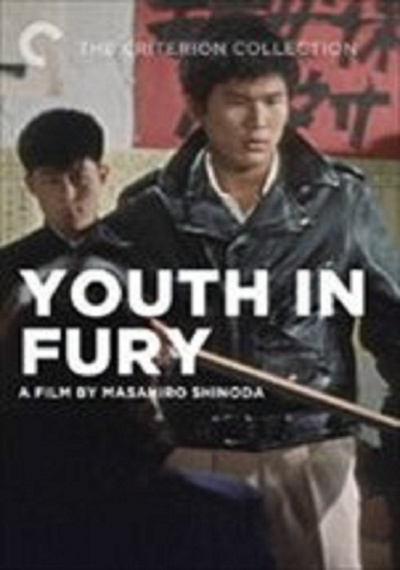 Youth in Fury