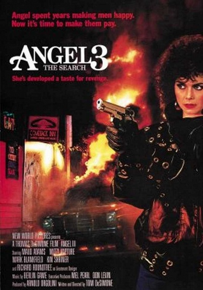 Angel III: The Final Chapter