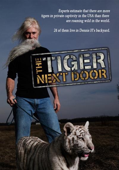 The Tiger Next Door