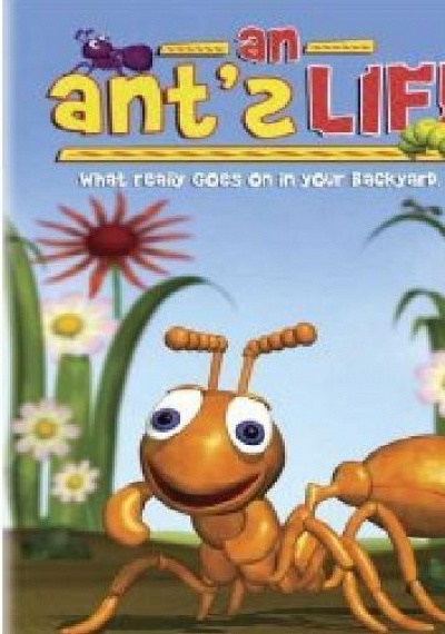 An Ant's Life