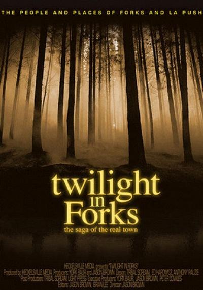 Twilight in Forks