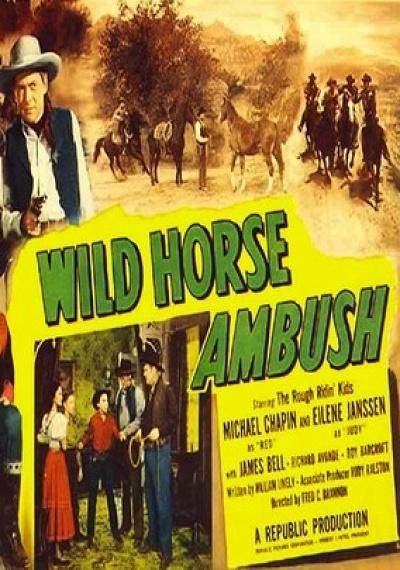 Wild Horse Ambush