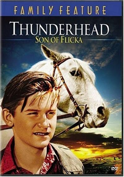 Thunderhead: Son of Flicka