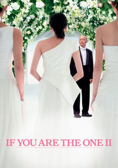 If You Are the One 2