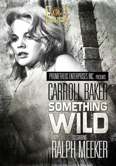 Something Wild