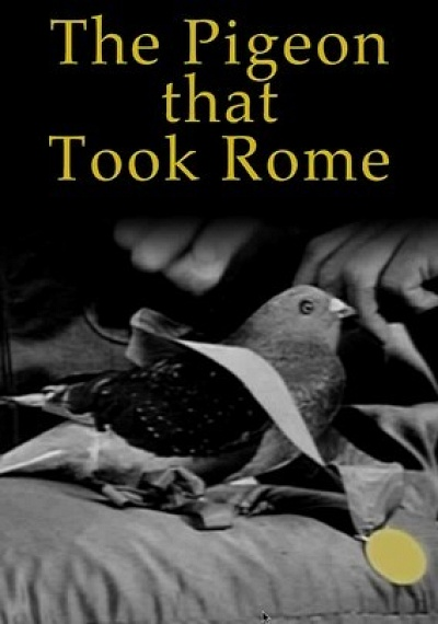 The Pigeon That Took Rome