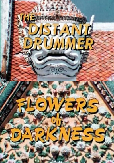 The Distant Drummer: Flowers of Darkness