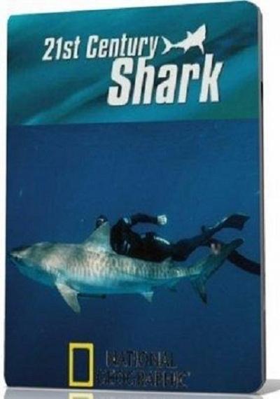 21st Century Shark