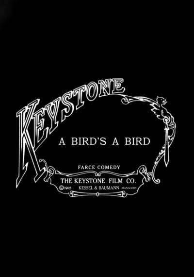 A Bird's a Bird