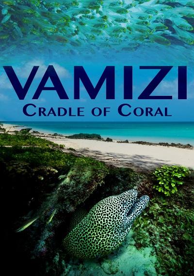 Vamizi Cradle of Coral