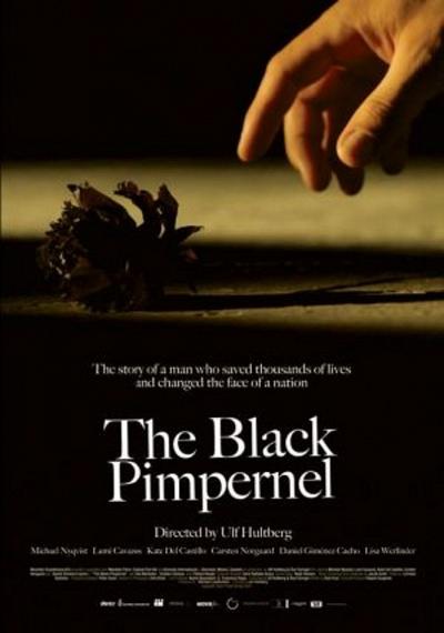 Black Pimpernel