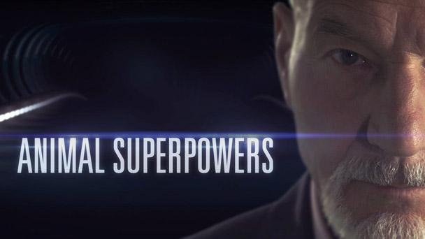 Animal Superpowers