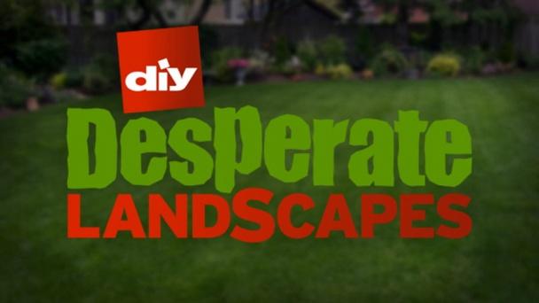 Desperate Landscapes