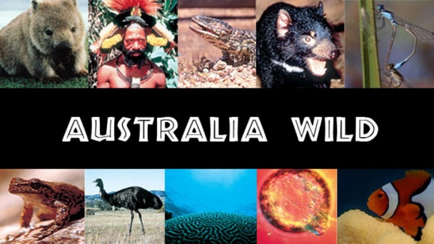 Australia Wild