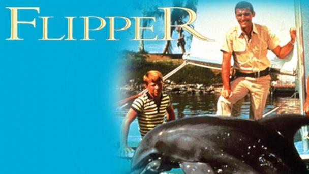 Flipper - Original