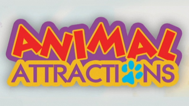 Animal Attractions