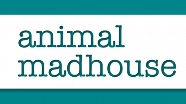 Animal Madhouse