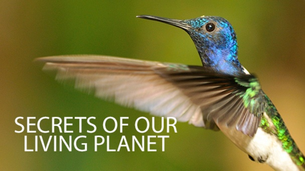 Secrets of Our Living Planet