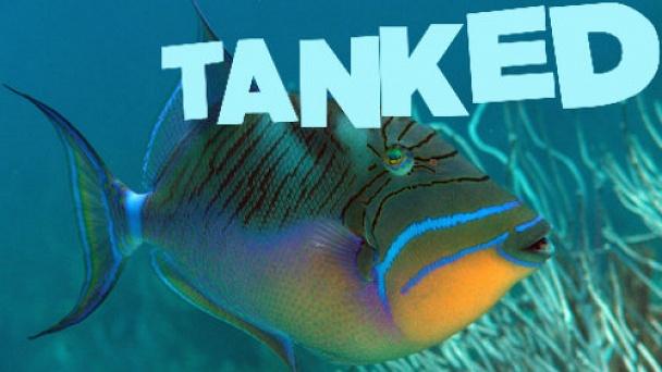 Tanked