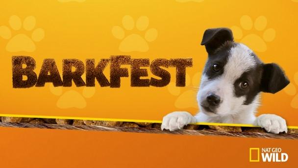 BarkFest